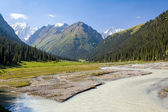 River and high mountain. Tien Shan — Foto Stock