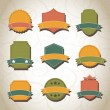 Vintage tags — Stock Vector