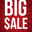 Big sale — Vector de stock #18524639