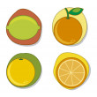 Citrus pictogrammen — Stockvector