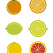Citrus icons — Vector de stock