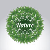 Natural icon — Stock Vector