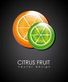 Citrus fruit — Stock Vector