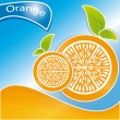 Orange citrus fruit — Stock Vector