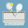 Tennis blue  — Stock Vector