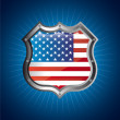 American shield — Stock Vector