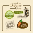 Fresh organic food  — Stock Vector