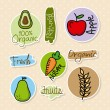Stock Vector: Organic icons