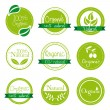 Stock Vector: Organic labels