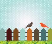 Kuşlar tasarım — Stok Vektör