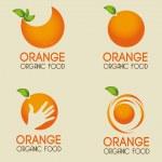 Orange citrus fruit — Stock Vector #32096879