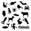 Animals — Stockvectorbeeld