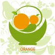 Orange citrus fruit — Stock Vector #36605439