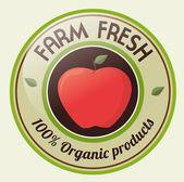 Fruits design — Stockvektor