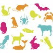 Pets design  — Stock Vector #41359415