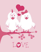 Love birds design — Stock Vector