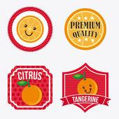 Früchte-design — Stockvektor