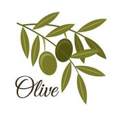 Olives design — Stockvektor