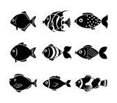 Fish design — Stock Vector