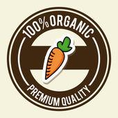 Natural design with carrot — Vecteur