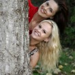 Stock Photo: Girl Friends and Tree