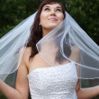 Gorgeous Smiling Bride — Stock Photo #2291382