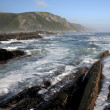 Coastal Scene in South Africa — Stock Photo #42177913
