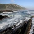 Coastal Scene in South Africa — Stock Photo