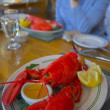 Maine lobster — Stock Photo #13905261