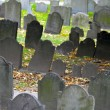 Historic cemetery — Stock Photo #13905297