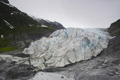 Kenai Fjord Glacier — Stock Photo
