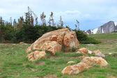 Mountain landscape of Wyoming — Stock Photo