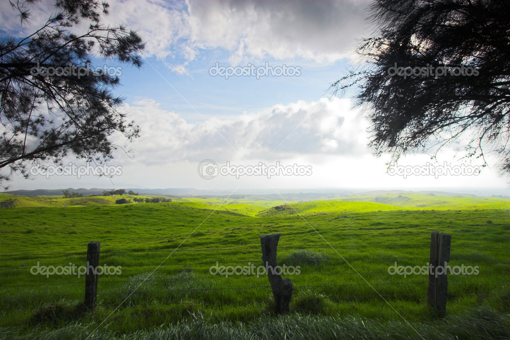 Green landscape and blue sky in Hawaii — Stock Photo #13904645