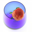 Blue glass with strawberry — Stok fotoğraf