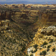 Colorado National Monument — Stock Photo #14088093