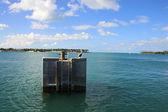 Island and pelican — Stock Photo