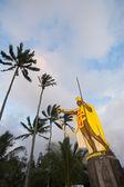 камехамеха статуя — Стоковое фото