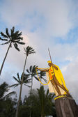 Statue de kamehameha — Photo