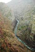 Royal gorge — Foto Stock