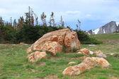 Paisagem de montanha de wyoming — Fotografia Stock