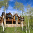 Stock Photo: Mountain resort house