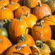 Helloween pumpkin — Stock fotografie
