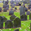 Historic cemetery — Stock Photo #17000897