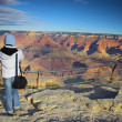 Grand Canyon — Stock Photo #17001319