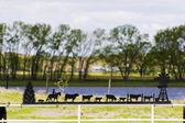 Paese di cowboy — Foto Stock