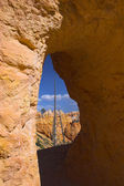 Arches of red rock — Stock Photo
