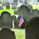 Historic cemetery — Stock Photo #17639169