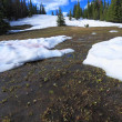 Постер, плакат: Melting snow in the mountains