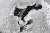 Snow — Stockfoto
