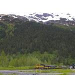 Alaska wetland — Stock Photo #18716701